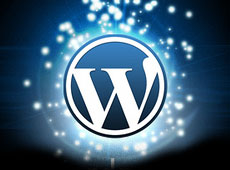 wordpress_tips_tiny